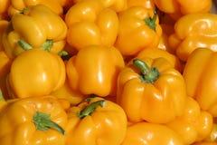 Paprikas amarillos   Imagen de archivo