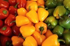 Paprikas colorés images stock