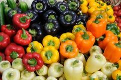 Paprikas coloridos Imagen de archivo libre de regalías