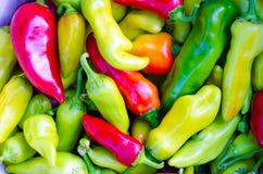 Paprikas coloridos del amarillo, verdes y rojos, fondo natural Foto de archivo