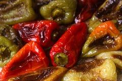 Paprikas cuits au four de différentes couleurs avec l'huile végétale et les herbes sur une plaque de cuisson Photo stock