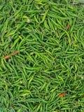 Paprikas für Verkauf am Markt stockfotos