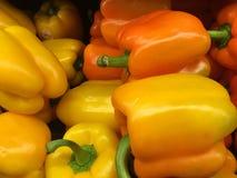 Paprikas oranges et jaunes Photographie stock libre de droits
