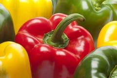 Paprikas rojos, verdes, amarillos Imagen de archivo libre de regalías