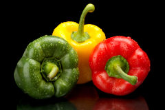 Paprikas rojos, verdes, amarillos aislados en negro Fotografía de archivo libre de regalías