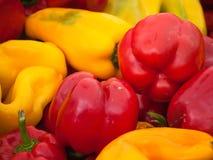 Paprikas rojos y amarillos Fotografía de archivo