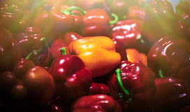 Paprikas rouges dans des récipients dans le supermarché Fond de nourriture Image stock