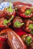 Paprikas rouges empilés Photographie stock