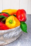 Paprikas rouges et jaunes dans le panier gris Légumes organiques sains Fin vers le haut Photographie stock
