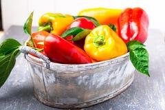 Paprikas rouges et jaunes dans le panier gris Légumes organiques sains Fin vers le haut Photos libres de droits