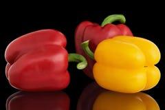 Paprikas rouges et jaunes frais Photographie stock