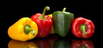 Paprikas rouges, verts, jaunes d'isolement sur le noir Photographie stock libre de droits