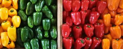 Paprikas rouges, verts, oranges et jaunes sur un compteur dans le supermarché Photo stock