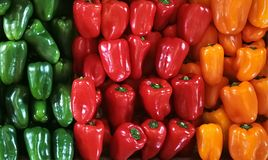 Paprikas rouges, verts, oranges et jaunes sur un compteur dans le supermarché Photographie stock libre de droits