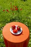 Paprikas y tomate rojos. Alimento sano. Fotografía de archivo