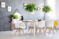 Paprocie wiesza nad łomotać stół zdjęcie royalty free