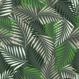 Paprociowego liścia bezszwowy wzór ilustracji