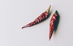 papryka chili czerwone Fotografia Stock