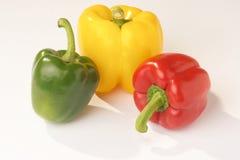 papryka pepper Zdjęcie Stock