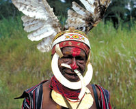 Papua New Guinea. Tribal Face Royalty Free Stock Photo