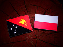 Papua New Guinea flag with Polish flag on a tree stump isolated. Papua New Guinea flag with Polish flag on a tree stump royalty free illustration