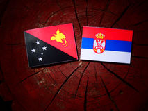 Papua New Guinea flag with Serbian flag on a tree stump isolated. Papua New Guinea flag with Serbian flag on a tree stump royalty free stock photo