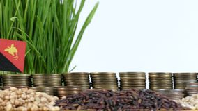 Papua New Guinea flag waving with stack of money coins and piles of wheat. And rice seeds stock video footage