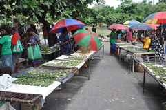 PAPUA NYA GUINEA FOLK arkivfoto