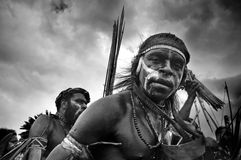 Papua Warrior Stock Images