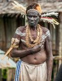 Papuan from Asmat tribe Royalty Free Stock Photos
