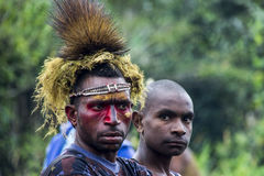Papuan killer's look from Huli tribe in Papua. Two warriors in Huli tribes of central Papua, coming back from tribal war with killer's look Royalty Free Stock Photography
