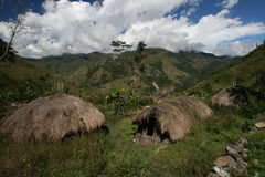 Papuan village. Traditional village in Baliem valley on Papua - Indonesia royalty free stock photos