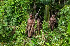 The Papuans  Korowai kombai (Kolufo) with bow and arrows Royalty Free Stock Photography