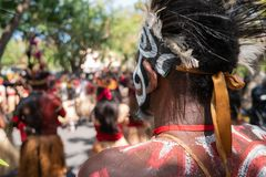 Papuascy tancerze przygotowywają dla występu przy Bali sztuk festiwalem 2019 Pesta Kesenian Bali To jest bezpłatny i społeczeństw obrazy stock