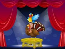 Papuga i indyk przy sceną Zdjęcia Stock