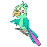 Papuga na branch-01 Zdjęcie Stock