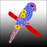 Papuga od kwiatów Obraz Royalty Free