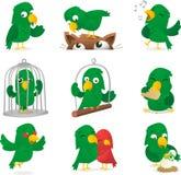 Papuga set ilustracja wektor