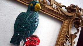 Papuga w ramie Zdjęcia Royalty Free