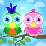 Papugi na gałąź Zdjęcia Stock