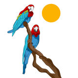 Papugi Siedzi W drzewie ilustracja wektor