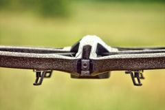 Papuzi Drohne obrazy royalty free
