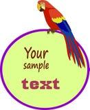 Papuzia ara z polem dla twój teksta Zdjęcie Royalty Free
