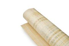 papyrus Stock Afbeelding