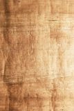 Papyrus Royalty-vrije Stock Fotografie