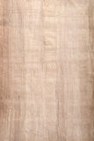 Papyrus. Original old handmade papyrus paper. Often used for rolled scrolls Royalty Free Stock Image