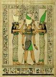 papyrus Стоковая Фотография
