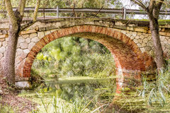 The papyrus bridge. Over the river Ciane in Syracuse Sicily Royalty Free Stock Image