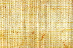 Papyrus closeup Royalty Free Stock Image