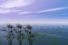 Papyrus et mer Images libres de droits